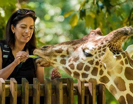 The North Carolina Zoo - Asheboro, NC | North Carolina Zoo