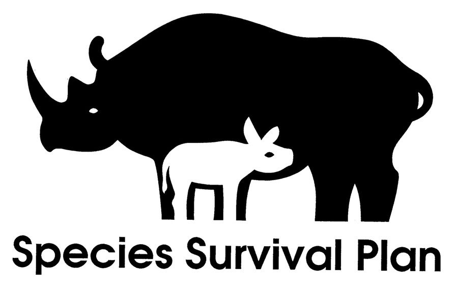 Saving Species Plan Logo