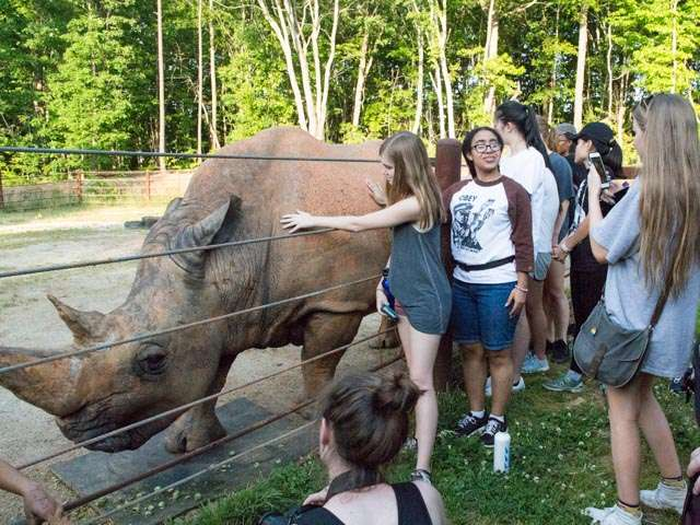 Behind the scenes meet Stan the rhino