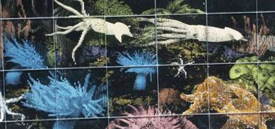Tile Mural of Underwater scene with Squid and Coral