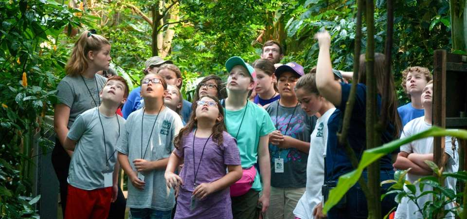 Wildlife Science Camp in the Aviary
