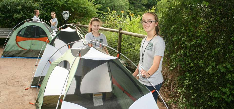 Wildlife Science Camp camping