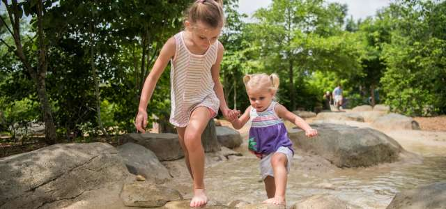 kidzone is the perfect place for kids to connect and learn with nature