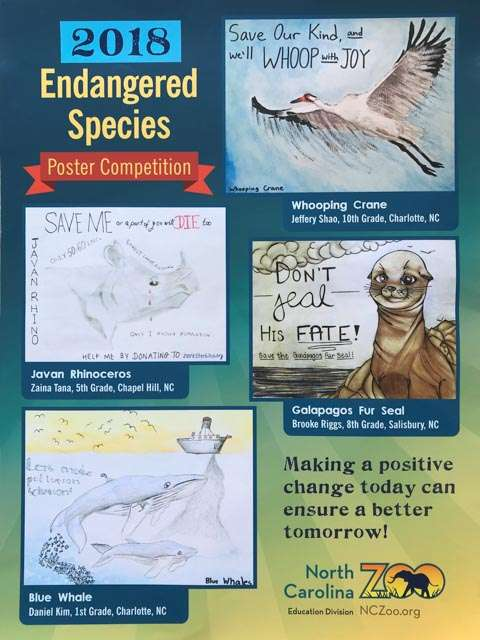 Endangered species poster contest