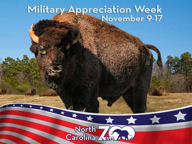 Military Appreciation Week